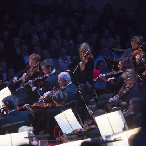 1597749273_CMSnederlands-philharmonisch-orkest--elmer-van-der-marel.jpg